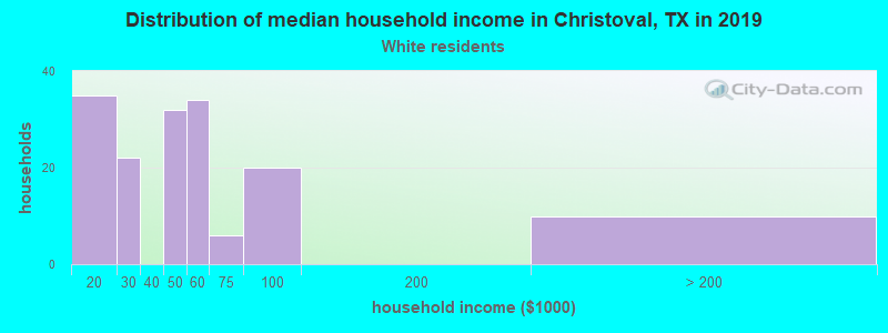 Christoval household income for White non-Hispanic householders