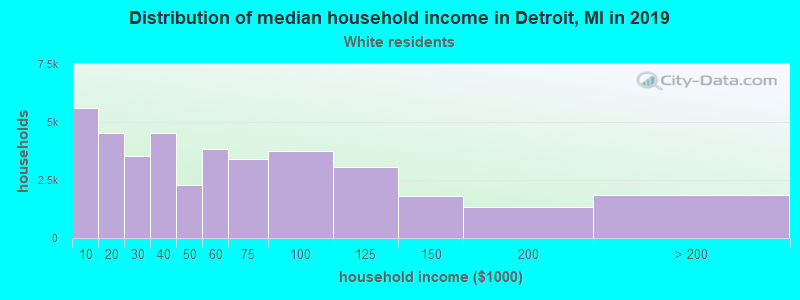 Detroit household income for White non-Hispanic householders