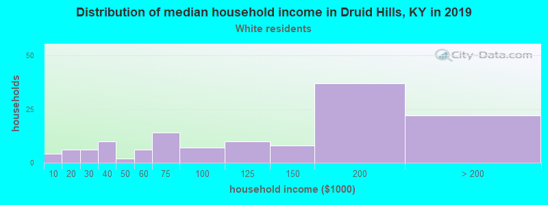Druid Hills household income for White non-Hispanic householders