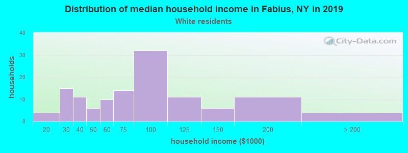 Fabius household income for White non-Hispanic householders