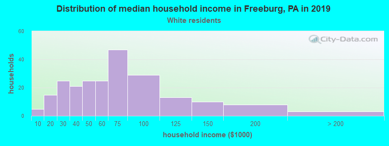 Freeburg household income for White non-Hispanic householders