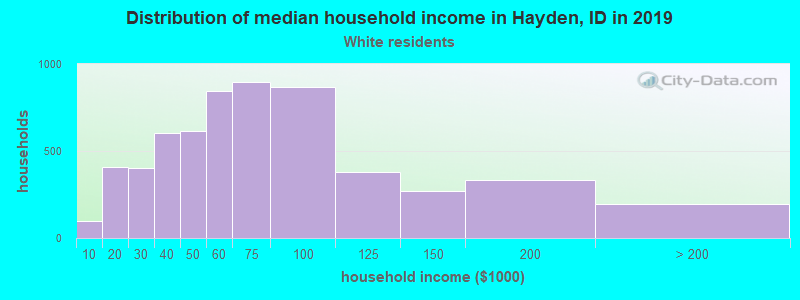 Hayden household income for White non-Hispanic householders