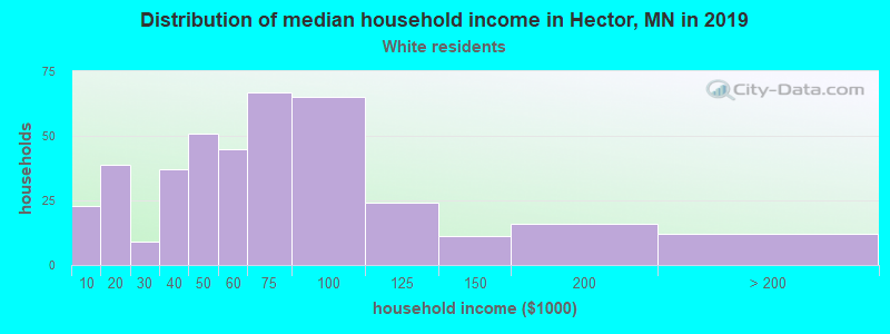 Hector household income for White non-Hispanic householders