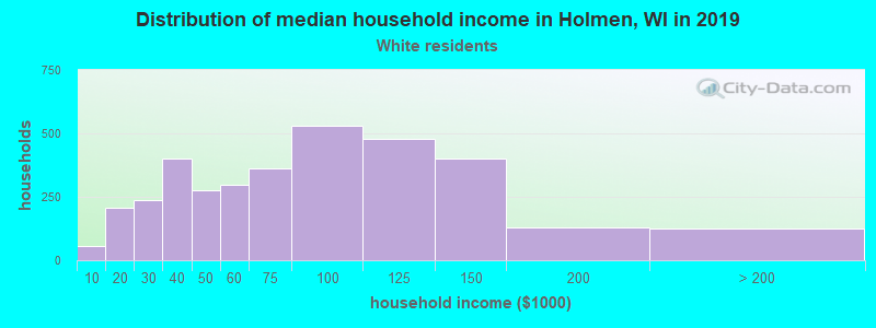 Holmen household income for White non-Hispanic householders