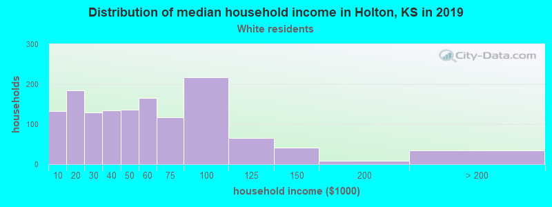 Holton household income for White non-Hispanic householders