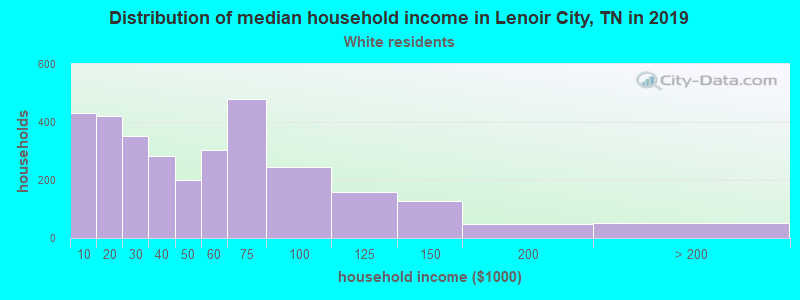 Lenoir City household income for White non-Hispanic householders