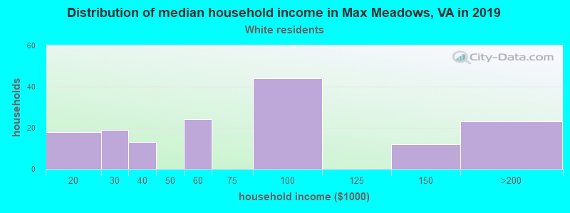 Max Meadows household income for White non-Hispanic householders