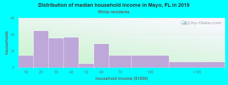 Mayo household income for White non-Hispanic householders