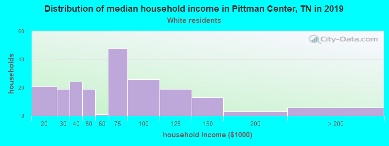 Pittman Center household income for White non-Hispanic householders