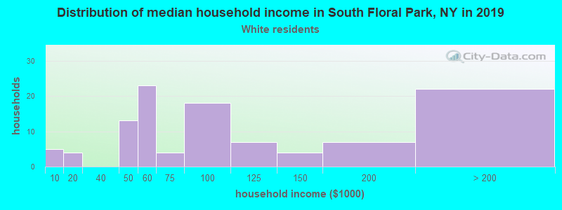 South Floral Park household income for White non-Hispanic householders
