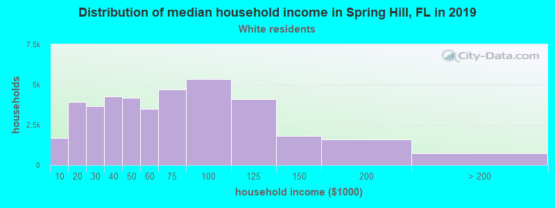 Spring Hill household income for White non-Hispanic householders