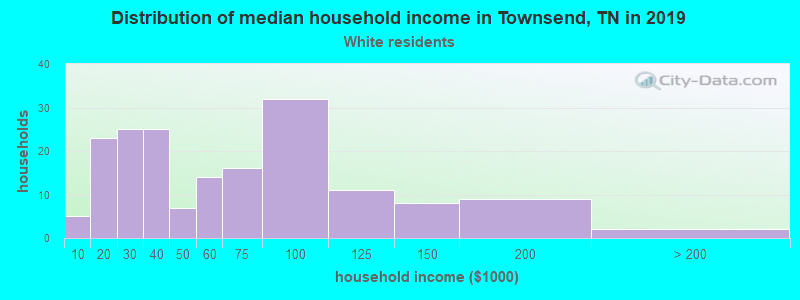 Townsend household income for White non-Hispanic householders
