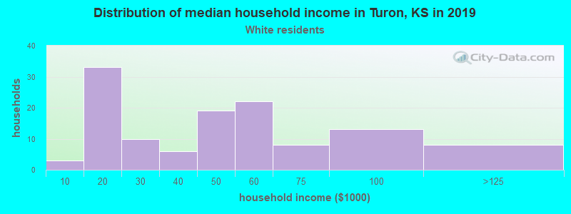 Turon household income for White non-Hispanic householders
