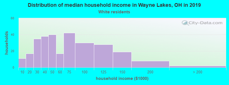 Wayne Lakes household income for White non-Hispanic householders