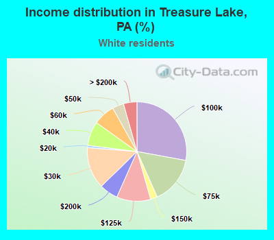 Income distribution in Treasure Lake (%)
