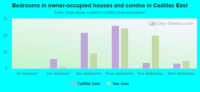 Bedrooms in owner-occupied houses and condos in Cadillac East