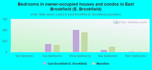 Bedrooms in owner-occupied houses and condos in East Brookfield (E. Brookfield)
