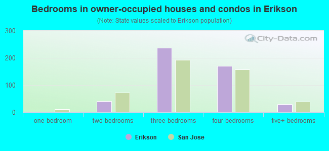 Bedrooms in owner-occupied houses and condos in Erikson