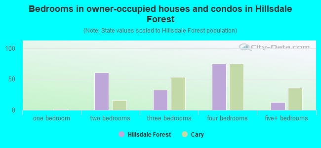 Bedrooms in owner-occupied houses and condos in Hillsdale Forest