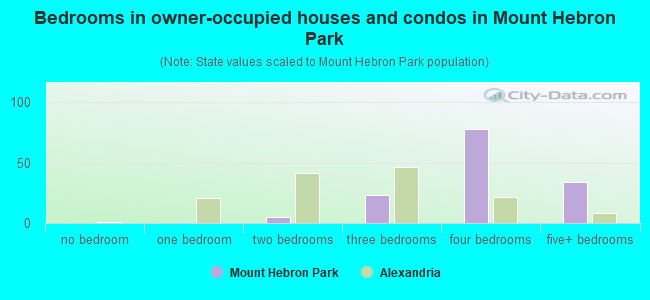 Bedrooms in owner-occupied houses and condos in Mount Hebron Park