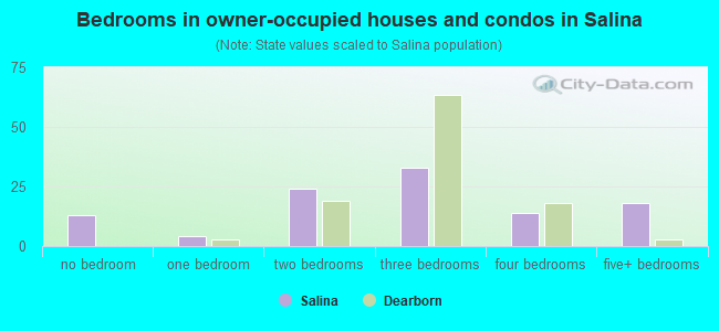 Bedrooms in owner-occupied houses and condos in Salina