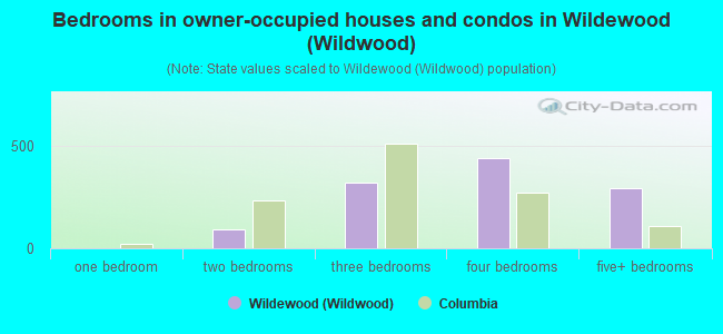 Bedrooms in owner-occupied houses and condos in Wildewood (Wildwood)