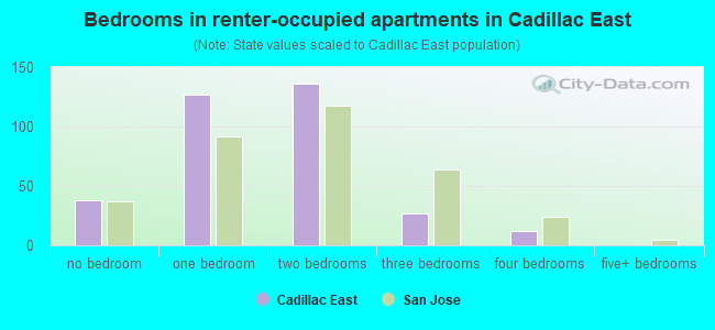 Bedrooms in renter-occupied apartments in Cadillac East