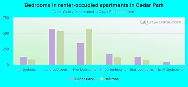 Bedrooms in renter-occupied apartments in Cedar Park