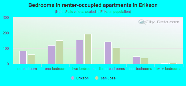 Bedrooms in renter-occupied apartments in Erikson
