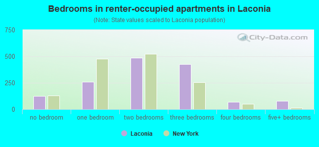 Bedrooms in renter-occupied apartments in Laconia