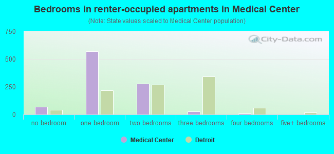 Bedrooms in renter-occupied apartments in Medical Center