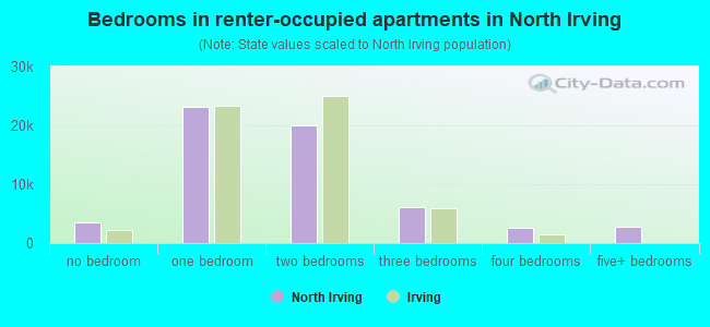 Bedrooms in renter-occupied apartments in North Irving