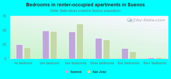 Bedrooms in renter-occupied apartments in Suenos
