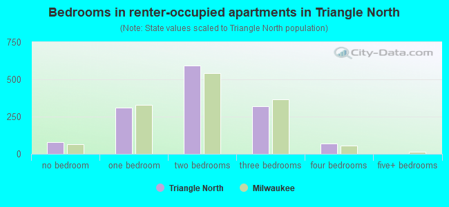 Bedrooms in renter-occupied apartments in Triangle North