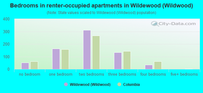 Bedrooms in renter-occupied apartments in Wildewood (Wildwood)