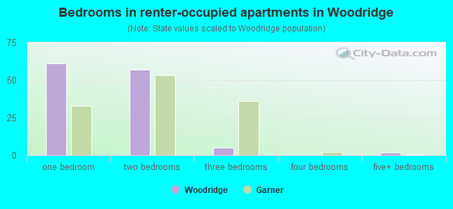 Bedrooms in renter-occupied apartments in Woodridge