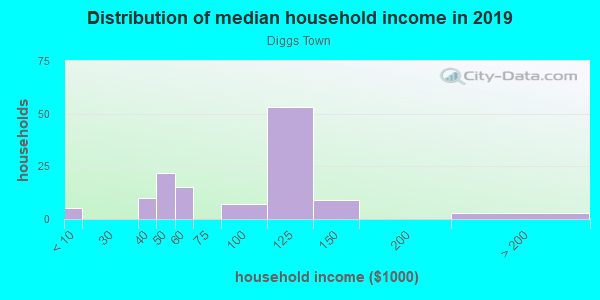 Household income distribution in 2013 in Diggs Town in Norfolk neighborhood in VA