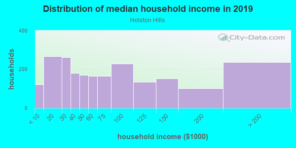 Household income distribution in 2013 in Holston Hills in Knoxville neighborhood in TN