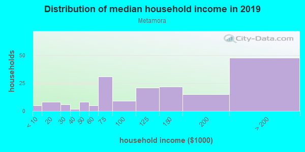 Household income distribution in 2013 in Metamora in Franklin neighborhood in MI