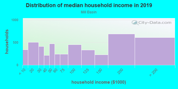 Household income distribution in 2013 in Mill Basin in Brooklyn neighborhood in NY