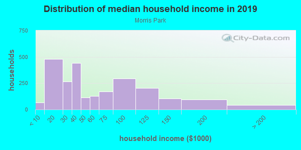 Household income distribution in 2013 in Morris Park in Minneapolis neighborhood in MN