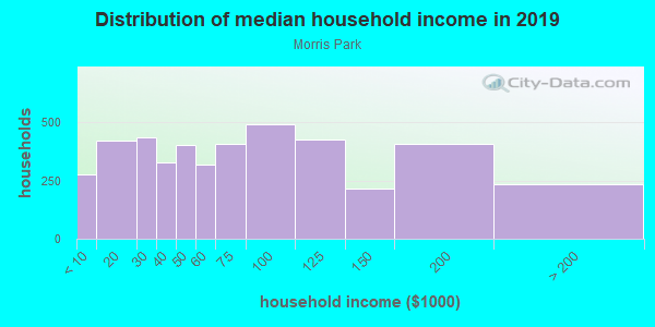 Household income distribution in 2013 in Morris Park in Bronx neighborhood in NY