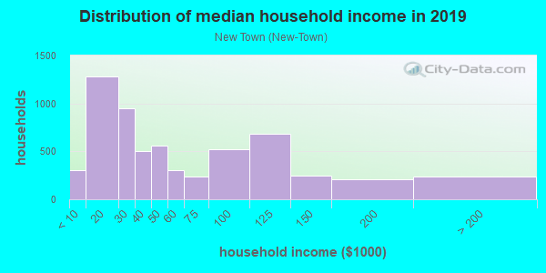 Household income distribution in 2013 in New Town in Key West neighborhood in FL