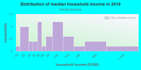 Household income distribution in 2013 in Newells Meadow in Derry neighborhood in NH