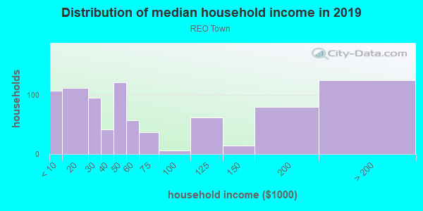 Household income distribution in 2013 in REO Town in Lansing neighborhood in MI