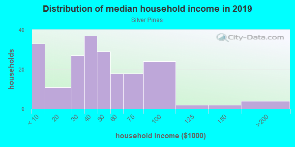 Household income distribution in 2013 in Silver Pines in Orlando neighborhood in FL