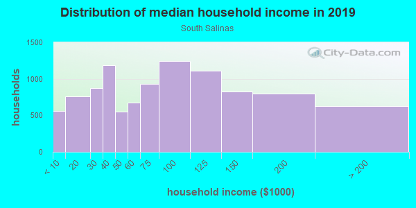 Household income distribution in 2013 in South Salinas in Salinas neighborhood in CA