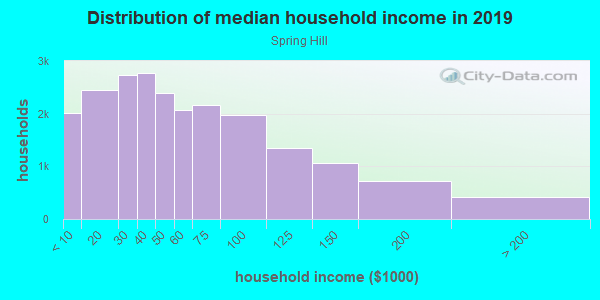 Household income distribution in 2013 in Spring Hill in Spring Hill neighborhood in FL