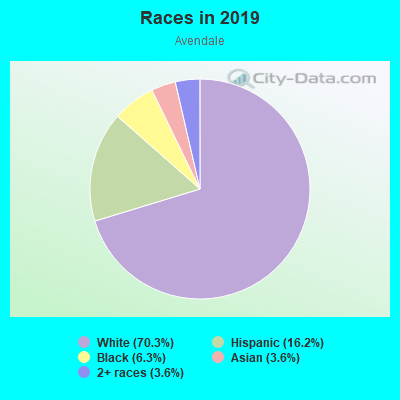 Races in Avendale in Lutz neighborhood in FL