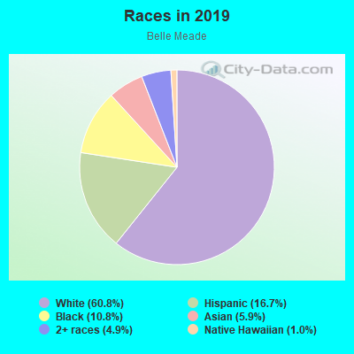 Races in Belle Meade in Miami neighborhood in FL